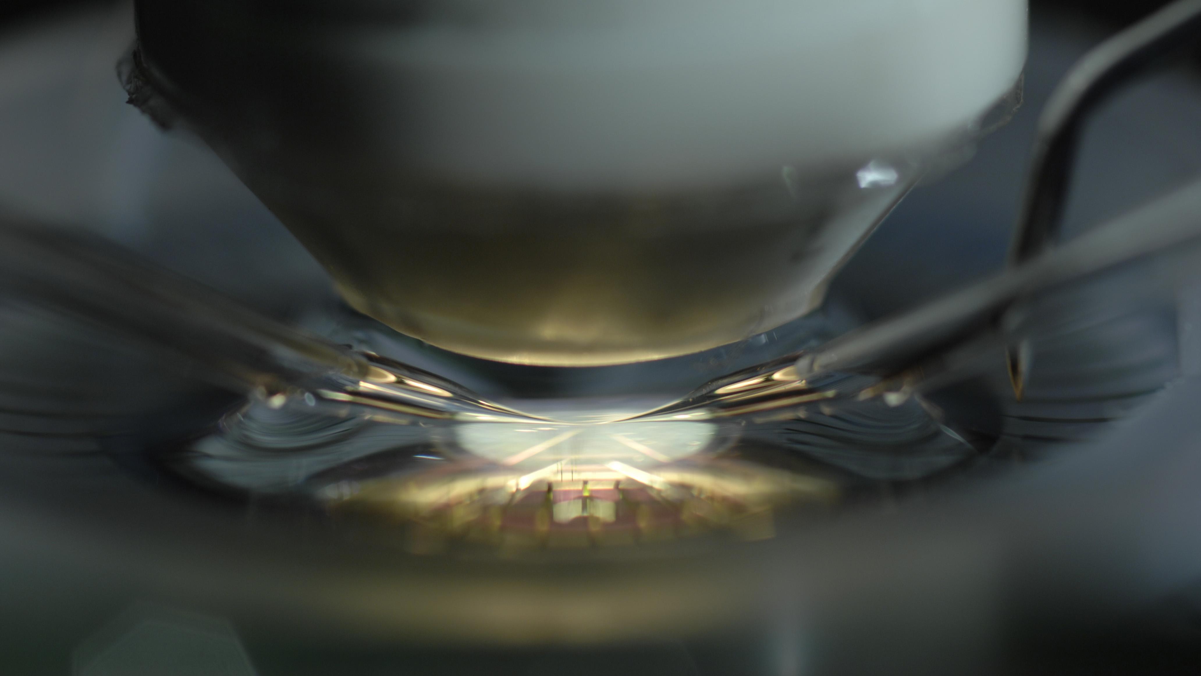 dsc6154-mikroskop-16x9-foto-bernd-meuller.jpg