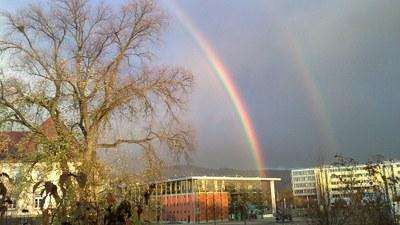 image0091-16x9-campusregenbogen-student.jpg