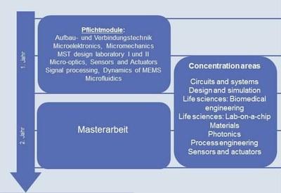 Curriculum MST